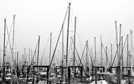 mess of masts