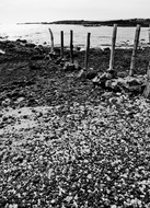 black and white pebbles and posts