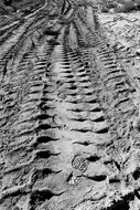 Tracks and Treads